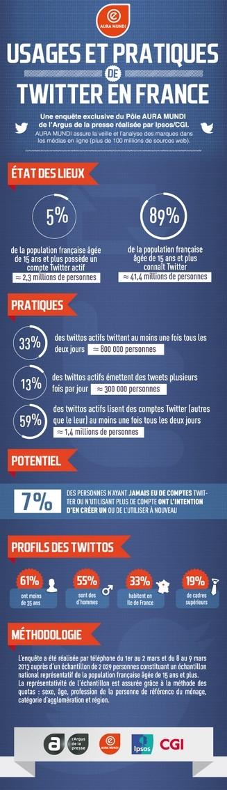 twitter usages en france 2013
